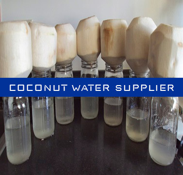 Indonesia Coconut Water Supplier | Coconut water Bulk