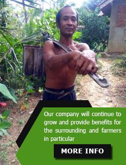 coconut sugar CSR bonafide anugerah