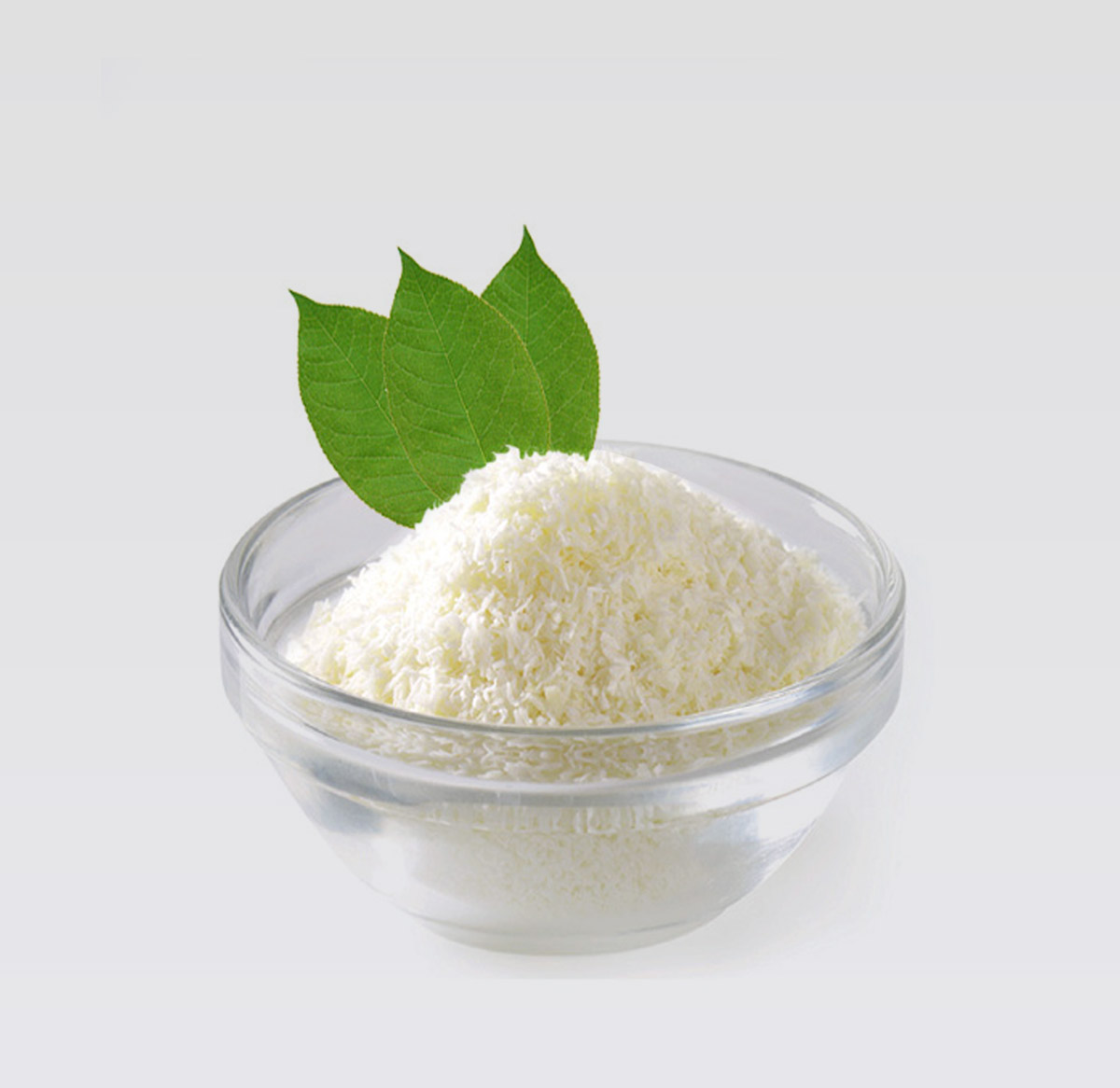 desiccated coconut supplier indonesia