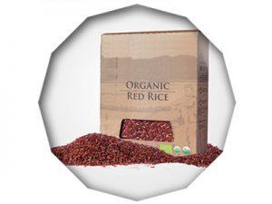 indonesia red rice organic 2